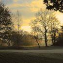 Laurence-Derx--Winter-2