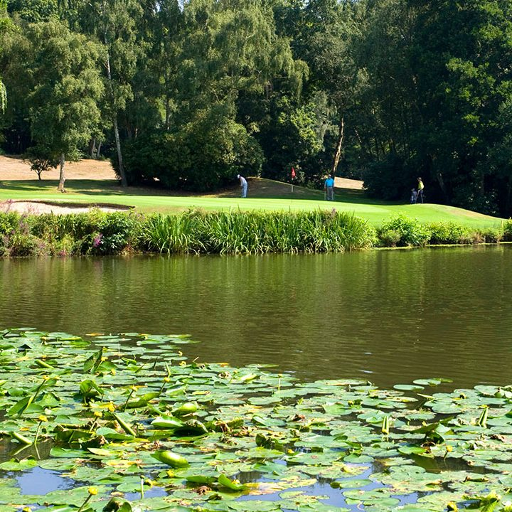 Silvermere-Golf-Course-17A